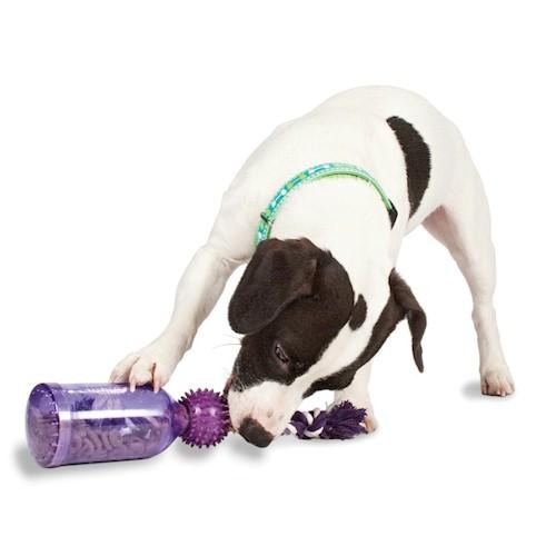 Evolution Dog Treats Uk