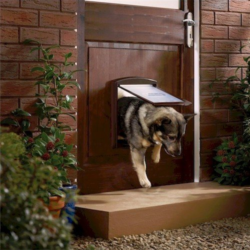 Petsafe Staywell 755 Medium Dog Door Brown